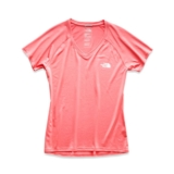 TNF S/S Graphic Reaxion Amp V Women's Spiced Coral/TNF White